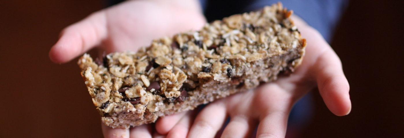 seed granola bars